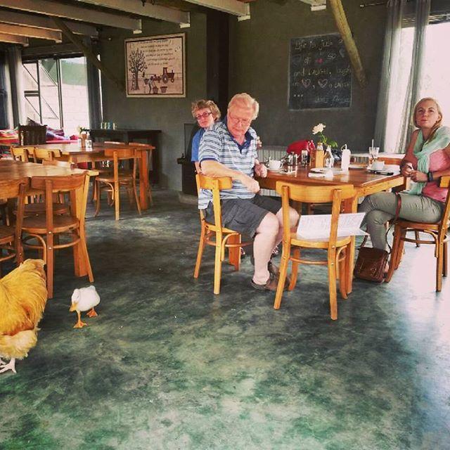 Farm Stall Lunch