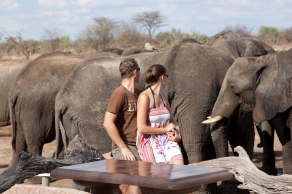 Villiers and his wife Tabby enjoying a magical close-up Elephant experience.