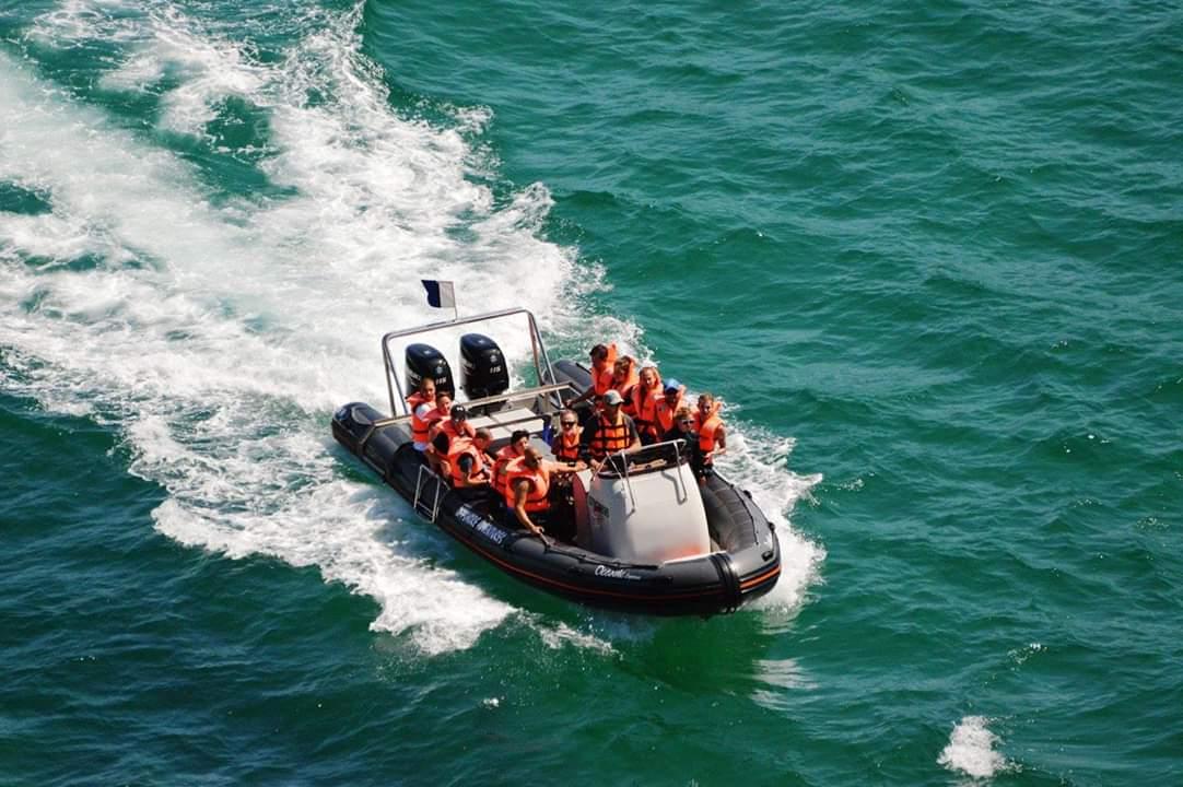 Offshore Adventures Plettenberg Bay